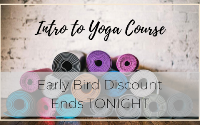 Intro 2 Yoga Course